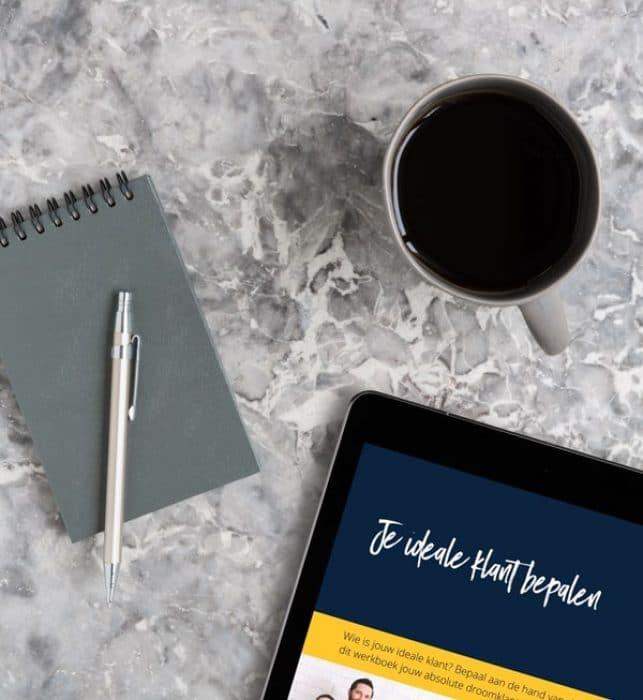 Ideale klant bepalen adhv vragen in het werkboek